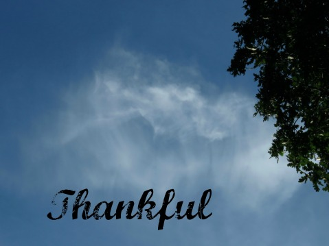 112916-thankful